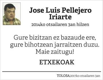 Jose Luis Pellejero Iriarte