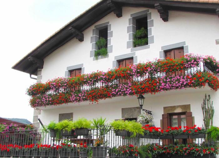 Berastegiko leiho, balkoi eta terrazak lorez apaintzeko deia