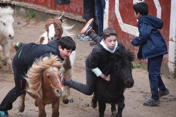 Inauterien agurra Piñata igandearekin - 15