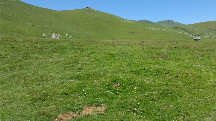 Aralarko normaltasun zaharra