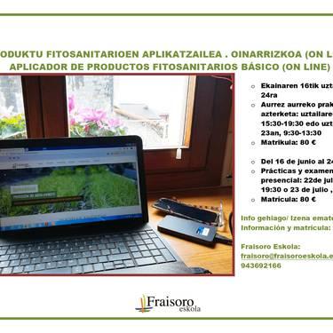 Ikastaroa. 'Online'