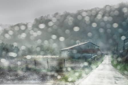 Basoan kokatutako argazkiekin osatuko da hurrengo urteko egutegia