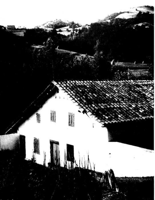 Joxepa Inaxi Elizegi: XIX. mendeko sagardotegiko bertsolaria