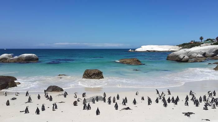 Egun hobeak datozenerako... Cape Town