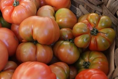 Tomateak, piperrak, aranak eta sagarrak azokan