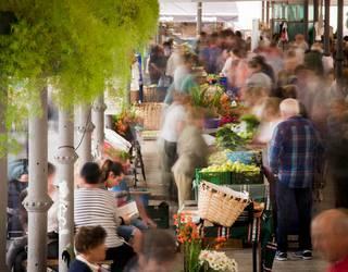 Azoka egingo dute bihar Tolosan