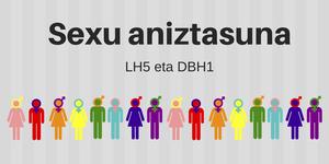 Sexu eta genero aniztasuna lantzen aritu dira LH5 eta DBH1ean.