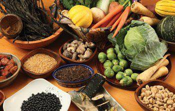 'Alimentación inteligente macrobiótica' hitzaldia
