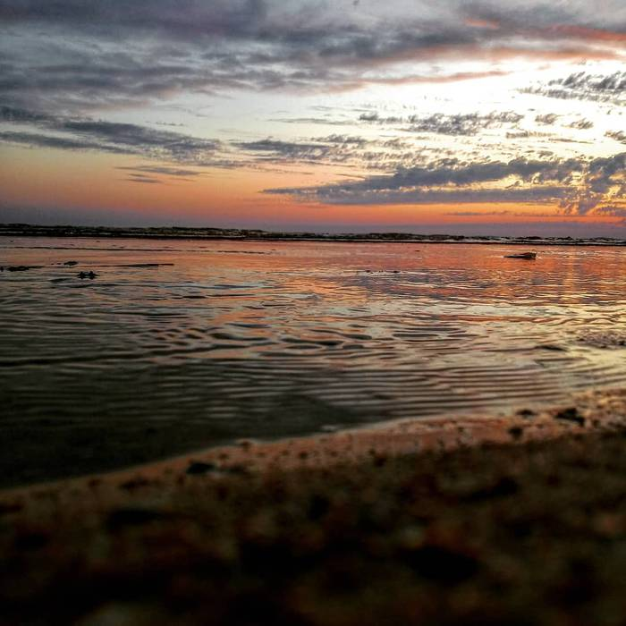 Doñana ko ilusentiak