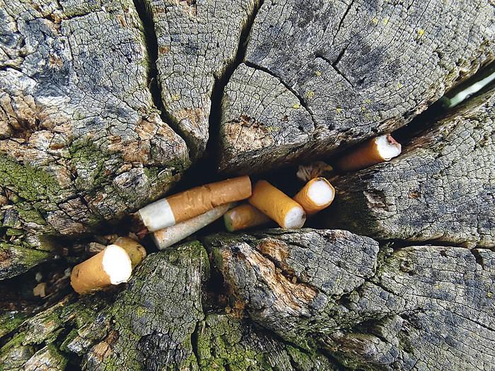 """""""Zigarrokinak oso toxikoak direla ahazten zaigu askotan"""""""