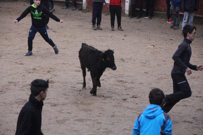 Inauterien agurra Piñata igandearekin - 29