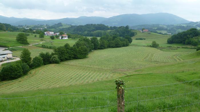 Zizurkilen landa-komunitateen historiari buruzko hitzaldia