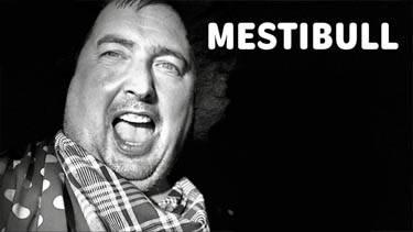 Mestibull