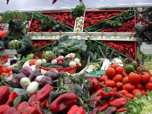Anoetako esperientziaren berri emango dute Udako Ikastaroetan